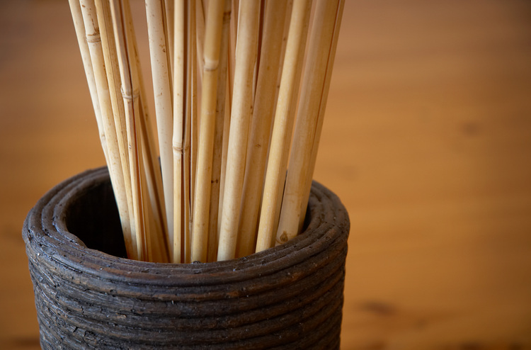 Dried Bamboo sticks