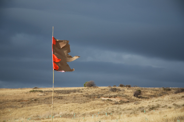 Red paper flag against a stormy sky