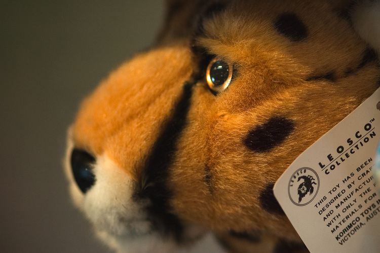 Closeup of a soft toy tiger