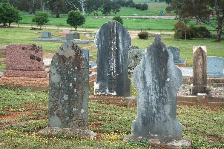 Three headstones in a cemetery